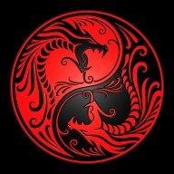 DragonDisciple